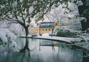 Roehampton_Southlands_snow_477_336_65_c1